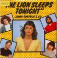 The lion sleeps tonight - Still the same