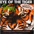 Eye of the tiger - Take you on a saturday